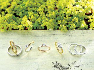 目線を変えて選ぶ、結婚指輪と婚約指輪。